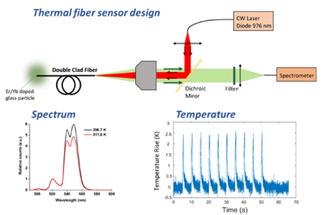 Principles of an optical thermometric endoscope for in-vivo temperature measurements during optogenetic stimulations
